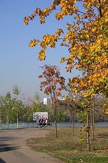 411 Осенью на берегу Москва-реки в Печатниках.   255k