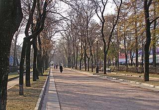 525 Тверской бульвар.   278k