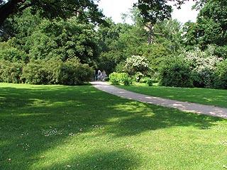 715 Ботанический сад МГУ.   254k