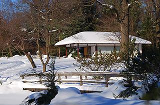 a045   Японский садик в Ботаническом саду.   181k