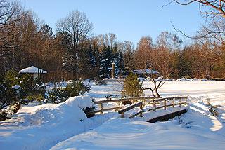 a050   Японский садик в Ботаническом саду.   159k