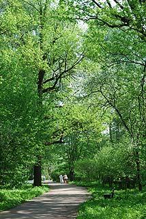 a149   Ботанический сад.   179k