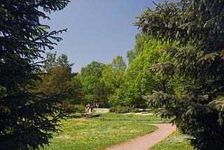 a166   Ботанический сад.  177k
