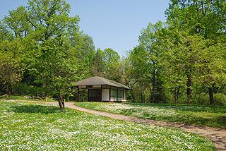 a169   Ботанический сад.  244k